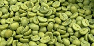 green tea recipe to lose weight fast